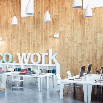 Co Work oficinas